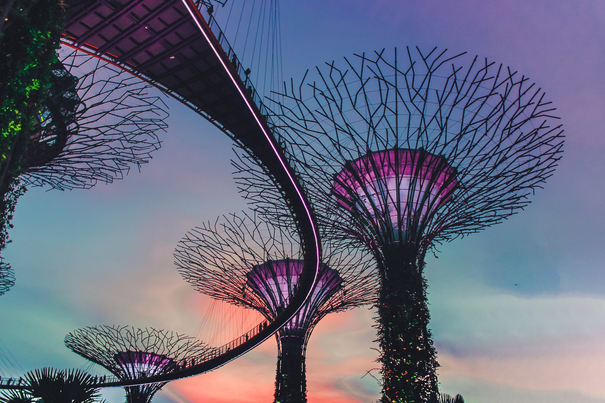 How Virtual Tour Boosts' Singapore's Tourism Amid COVID-19